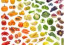 Jak odżywiać nasze geny?