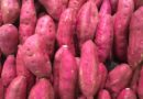 Batat – cudzoziemski ziemniak