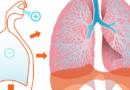 Odkryto geny powodujące tętnicze nadciśnienie płucne