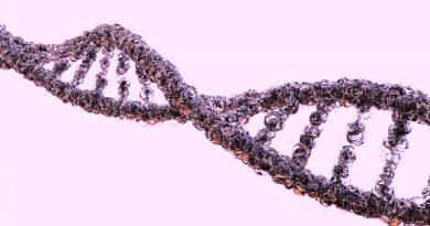 Naukowcy odkryli nowy mechanizm rozwoju stwardnienia zanikowego bocznego