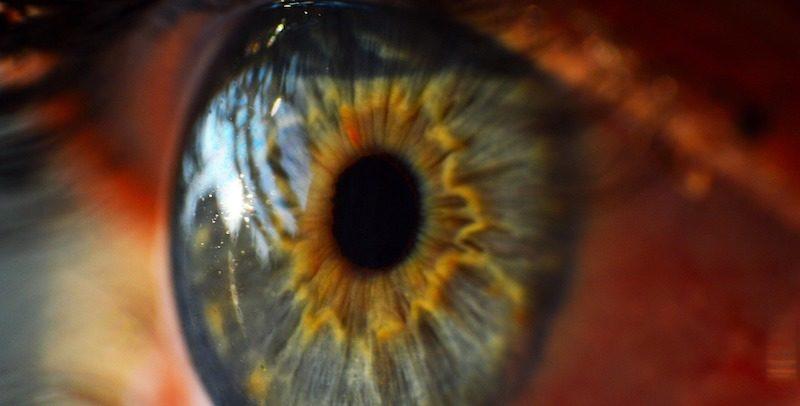 Czy komórki macierzyste mogą uratować nam wzrok?