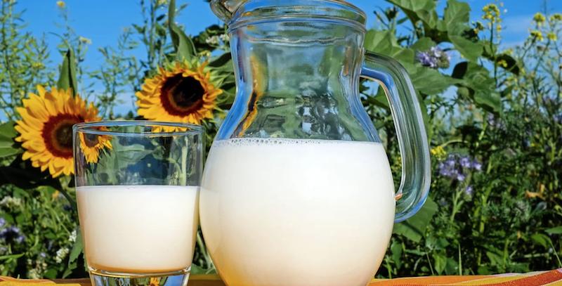 Pełne mleko lepsze dla dzieci niż mleko z niską zawartością tłuszczu