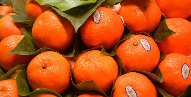 Mandarynki – dlaczego powinno się spożywać je z umiarem?
