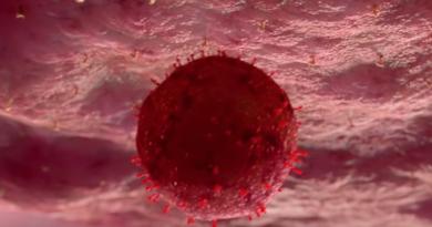 Obalono niebezpieczny mit dotyczący koronawirusa