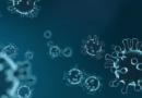"""Teoria """"niebezpiecznych mutacji"""" koronawirusa została obalona"""