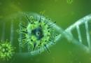 Część ludzkiego białka znaleziona w koronawirusie