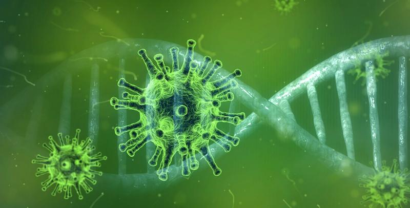Eksperci WHO opisali cztery scenariusze przenoszenia koronawirusa na ludzi