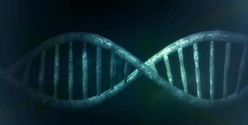 Odkryto nowy skuteczny sposób leczenia raka