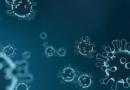 Jak przewidzieć śmierć z powodu koronawirusa?